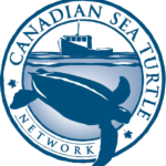 Logo of Centre with turtle underwater with boat in background